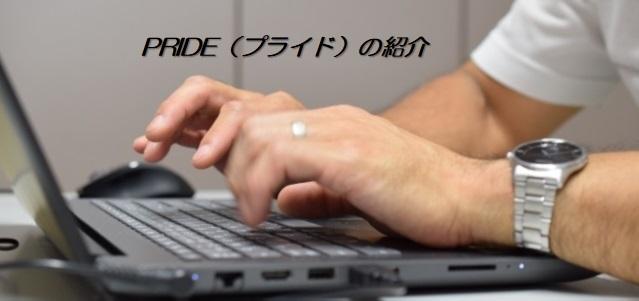 PRIDE(プライド)の紹介【その1】資産型ブログ構築!!